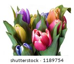 A bunch of spring tulips - stock photo