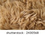 artificial fur textures - stock photo