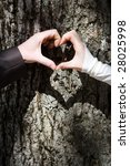 Couples hands forming heart shape with tree trunk in background. - stock photo
