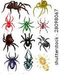 colored spiders - stock vector
