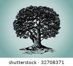Oak - stock vector