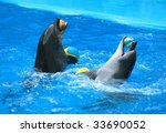 Two dolphins with balls. - stock photo