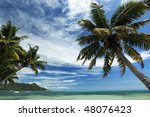 Seychelles. Palm trees and ocean. Praslin Island - stock photo