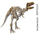 3d render a skeleton of the dinosaur t-rex than illustration - stock photo