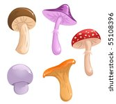 Set of cute mushrooms - stock photo