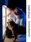 Pregnant woman and her pets looking for food in the refrigerator - stock photo