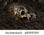 Real human skull figured as crime scene - stock photo