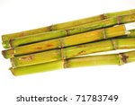 Stumps Of Fresh Sugarcane Isolated On White Background - stock photo