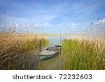 old rowing boat among the reeds - stock photo