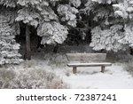 winter scenery with snow and trees - stock photo