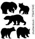 A collection of silhouettes of bears - stock vector