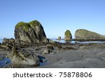 Early morning minus tide reveals tide pools at the Oregon Coast - stock photo