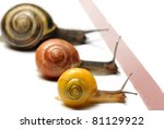 Three snails racing towards red finish line - stock photo