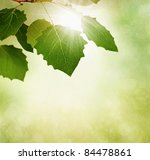 Autumn or fall border with leaves and sun ray on textured background - stock photo