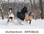 Three horses running - stock photo