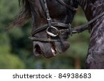 Horse riding equipment detail - stock photo