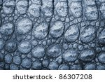 Blue reptile leather imitation texture to background - stock photo