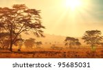 african savannah at sunrise - stock photo