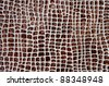Brown spots background - stock photo