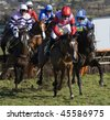 CHELTENHAM, GLOUCS; JAN 30:  Jockeys battle over hurdles in the first race at Cheltenham Racecourse, UK, January 30, 2010 in Cheltenham, Gloucestershire - stock photo