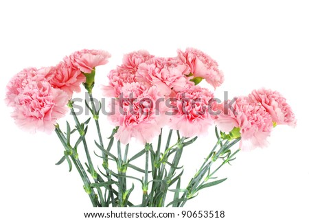 Pictures border flowers photo frames photo frames online funny photo ...
