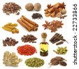 Spice collection isolated on white background - stock photo