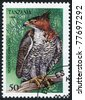 TANZANIA - CIRCA 1994: Postage stamps printed in Tanzania shows Spizaetus ornatus, circa 1994 - stock photo