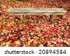 Wood bench surrounded by fallen autumn leaves - stock photo