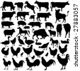 43 pieces of detailed vectoral farm animals silhouettes. - stock vector
