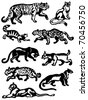 Collection of wild cats - stock vector