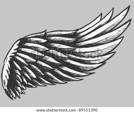 Eagle Wings Drawing Hand Drawn  Eagle Wing Drawing