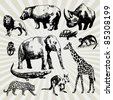 Set of Exotic Animals Hand Drawn - stock vector