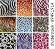 vector animal skin textures of tiger, zebra, giraffe, leopard, cow and cheetah - stock vector