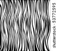 vector - zebra texture Black and White - stock vector