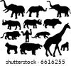 wild and zoo african animals silhouette - stock vector