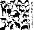 Wild animals-vector - stock vector